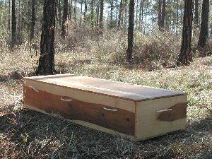 шкаф-гроб